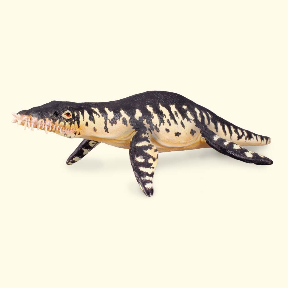 Liopleurodon 18 cm Dinosaures Collecta 88237